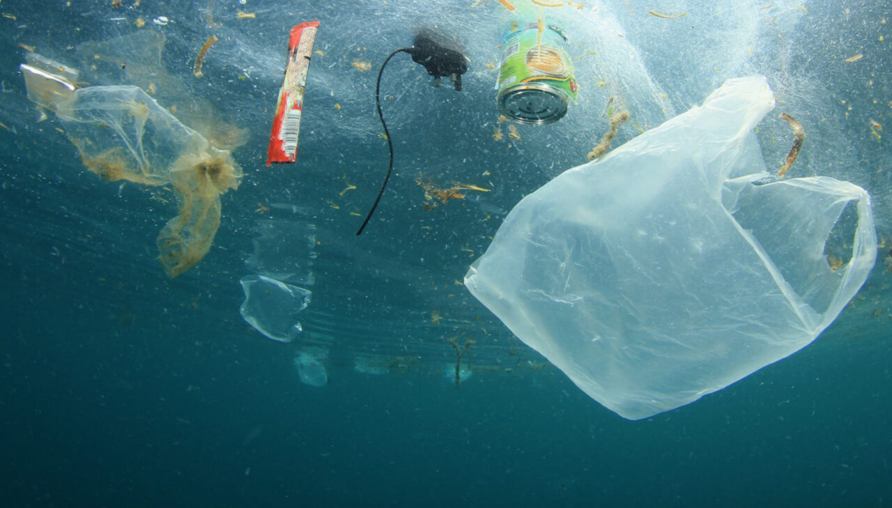 "Talking Rubbish: ""The more I refuse, the more plastic I find to give up"""