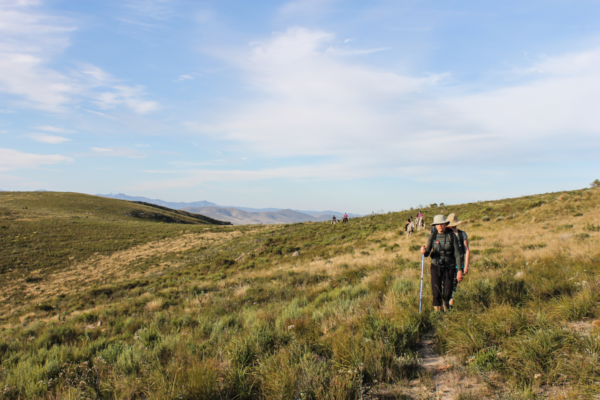 Walking the Baviaans Camino will put a little soul in your heart