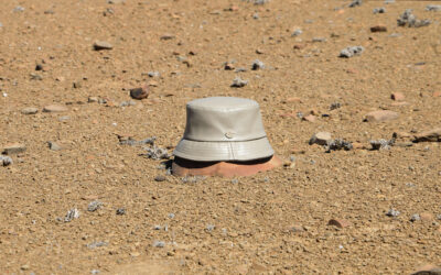 Simon and Mary turns cactus leather into smooth hats
