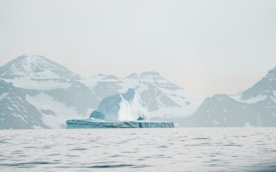 New study finds polyester fibres throughout the Arctic Ocean